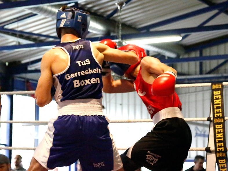 Hauen und Stechen bei Boxring Düsseldorf